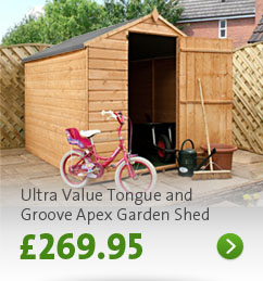 Click here - 8'x 6' Ultra Value Tongue and Groove Shed